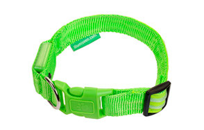 Illumiseen Dog LED Collar