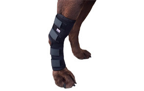 labra extra supportive dog knee brace