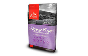 orijen large breed dry puppy food