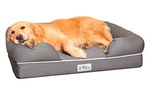 petfusion large dog bed memory foam