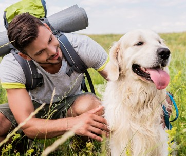 10 essential tips when hiking with your dog