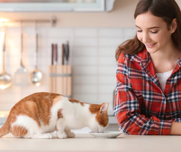 10 foods to avoid feeding your cat