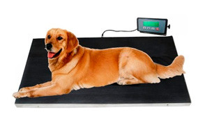 IBE SUPPLY 660 Lb Veterinary Pet Scale