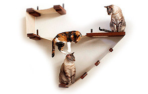 catastrophicreations deluxe playplace cat hammock
