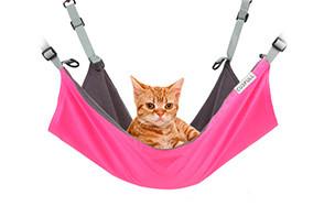 cusfull cat hammock