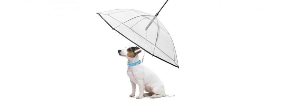 Abzon Transparent Pet Dog Umbrella
