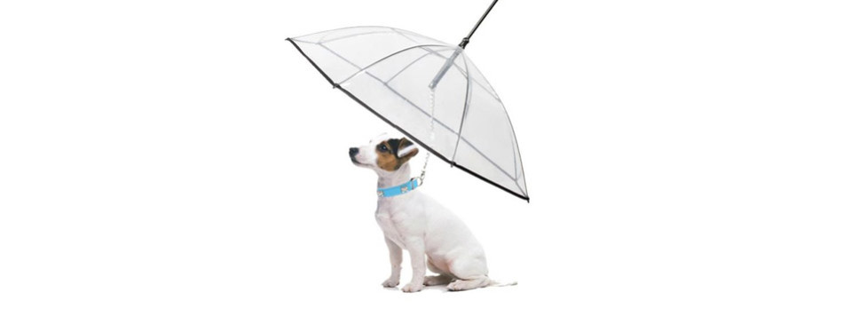 Abzon Transparent Pet Dog Umbrella