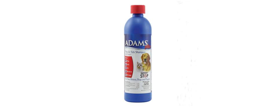 Adams Plus Flea Shampoo for Cats