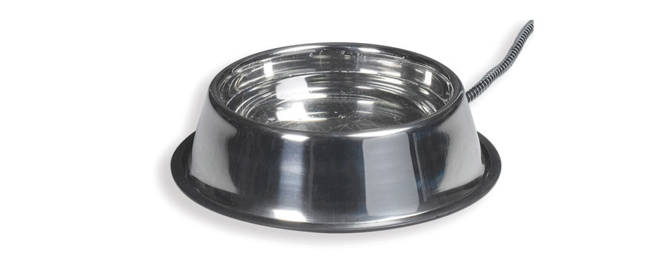 Allied Stainless Steel Heated Water Bowl