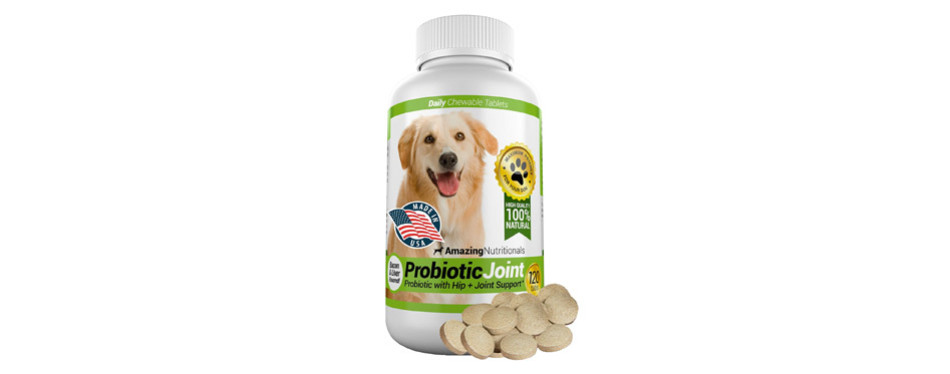 Amazing Nutritionals Probiotics for Dogs
