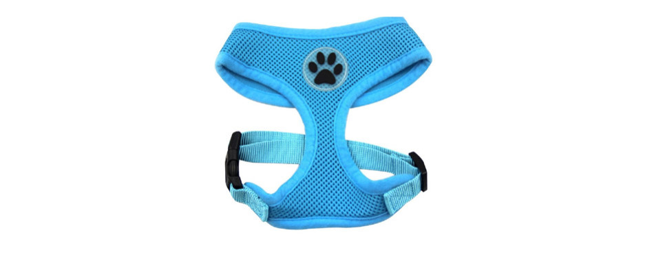 BINGPET Dog Harness Pet Walking Vest Puppy Padded Harnesses