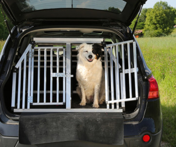best dog car barrier