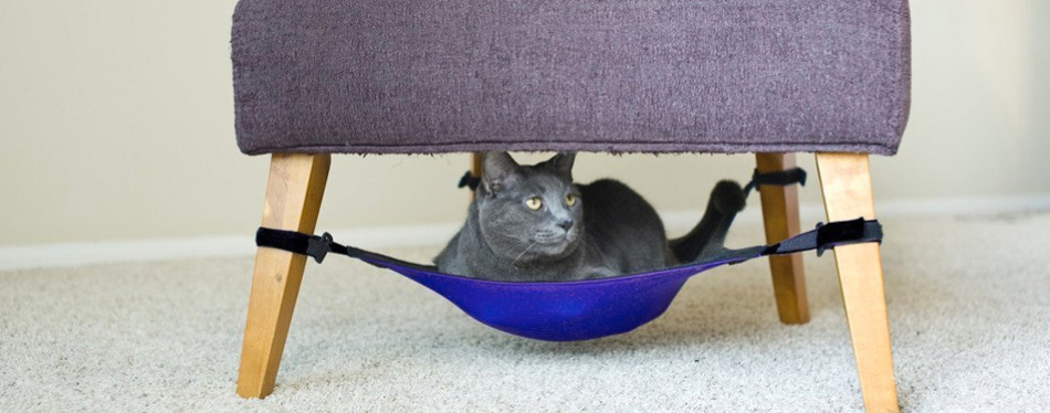 1. cat crib cat hammock