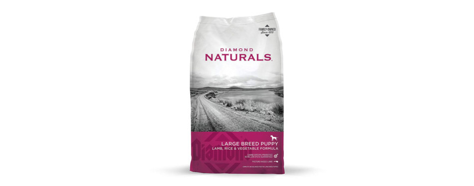 Diamond Naturals, Large Breed Puppy Formula