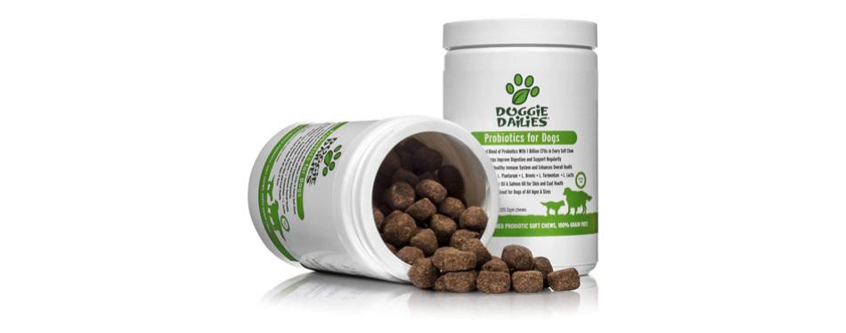 Doggie Dailies Probiotics for Dogs