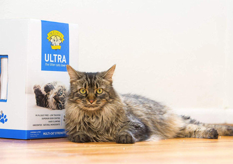 Dr. Elsey's Clumping Cat Litter