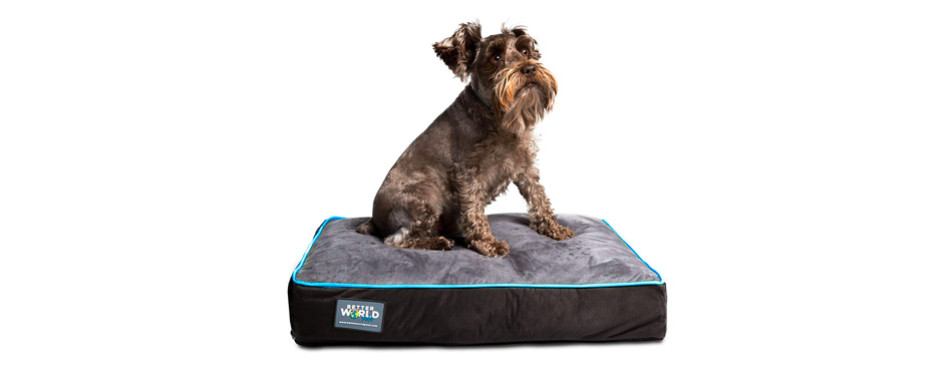 First Quality Orthopedic Dog Bed