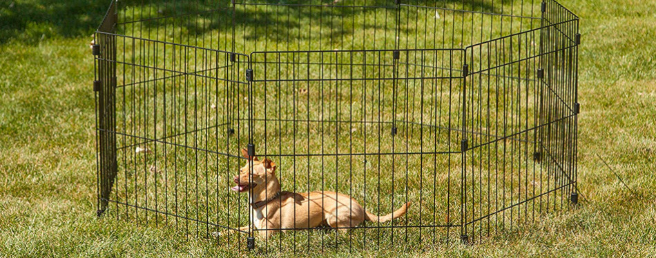 IRIS USA, Inc. Wire Pet Pen