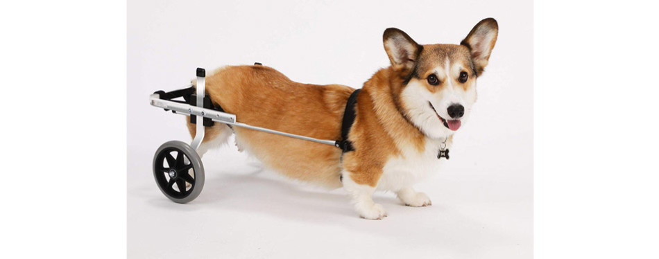 K9 Carts Original Dog Wheelchair