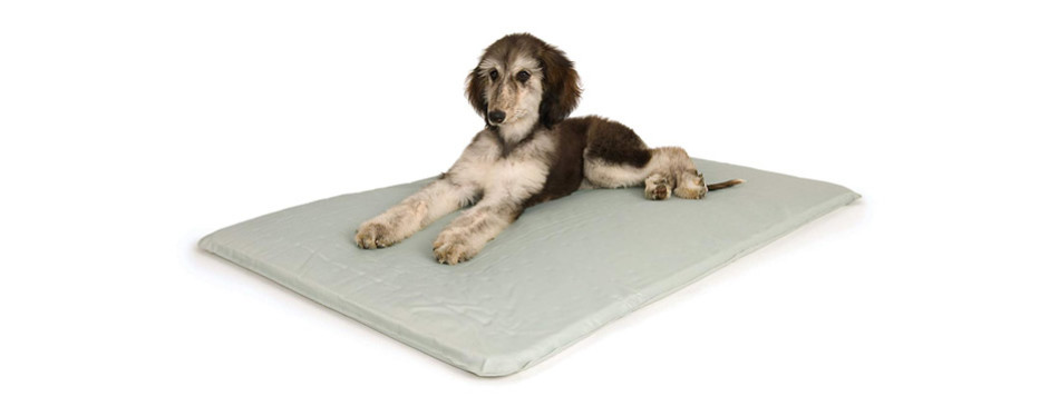 K&H Pet Products Cool Bed