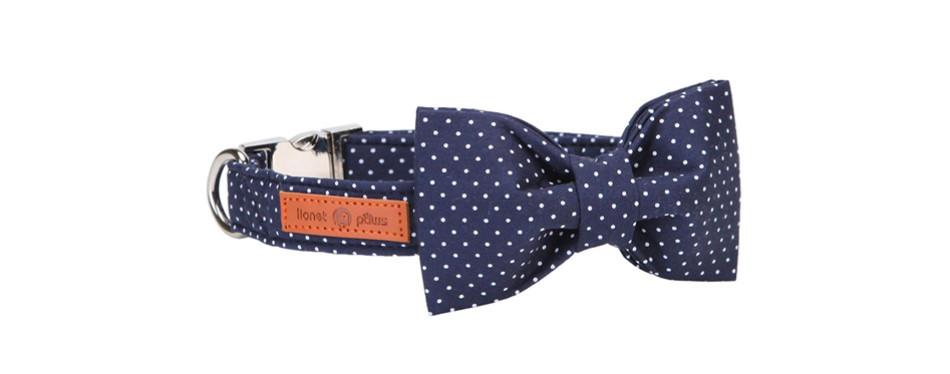 lionet paws dog collar bowtie