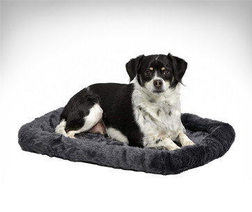 MidWest Deluxe Bolster Dog Bed