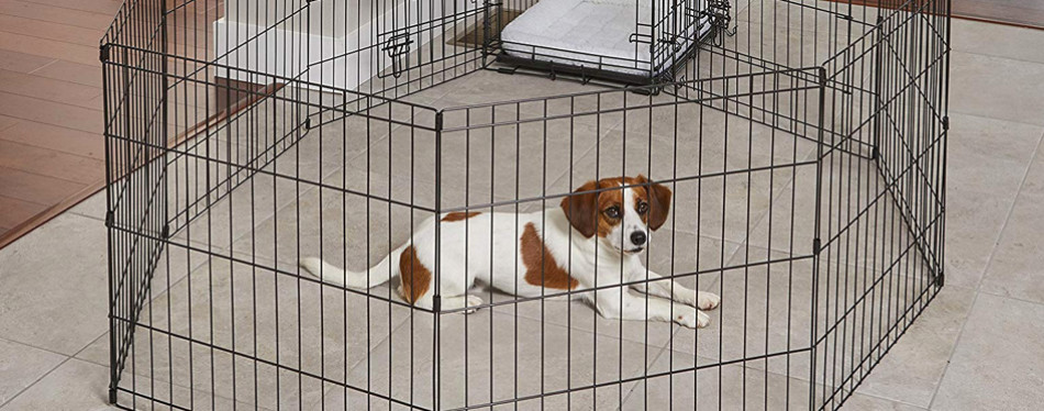Midwest Exercise Pet Playpen