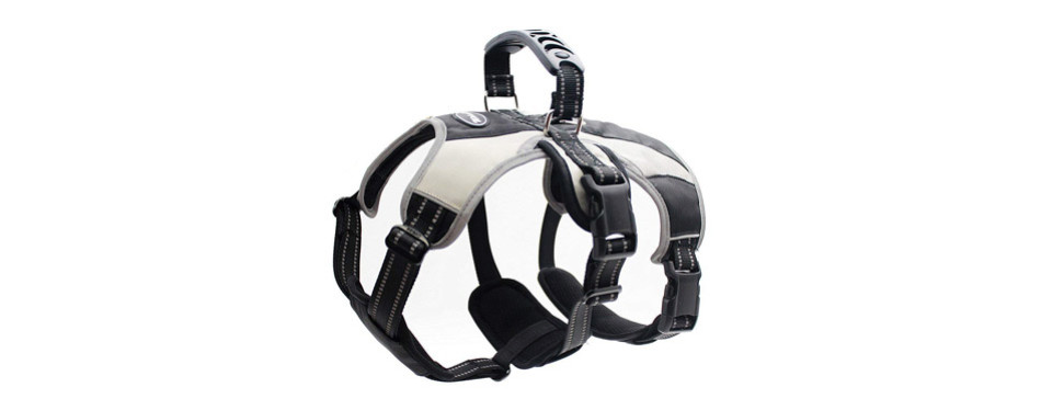 Mihachi Secure Dog Harness