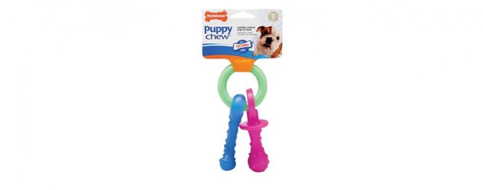 Nylabone Pet Chew Teething Pacifier