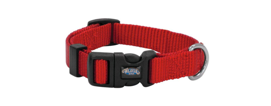 nylon prism snap-n-go dog collar by weaver