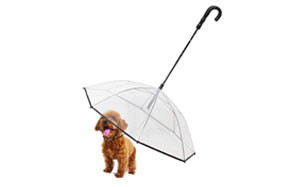 Pet Dog Umbrella by NiceHyacinth