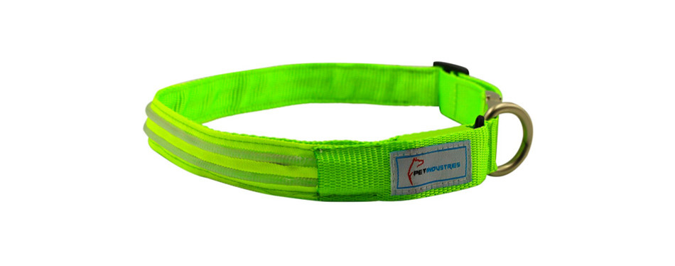 Pet Industries Metal Buckle Dog LED Collar