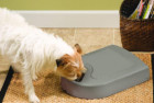 PetSafe 5 Meal Automatic Dog Feeder