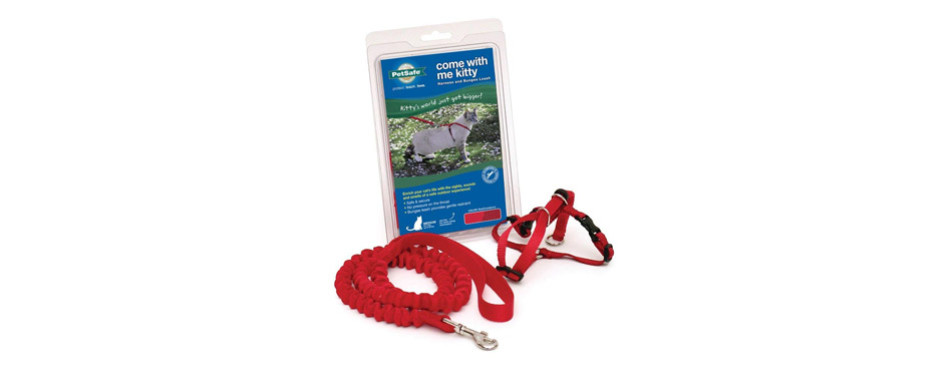 petsafe come with me cat harness