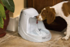 PetSafe Drinkwell Dog Water Fountain