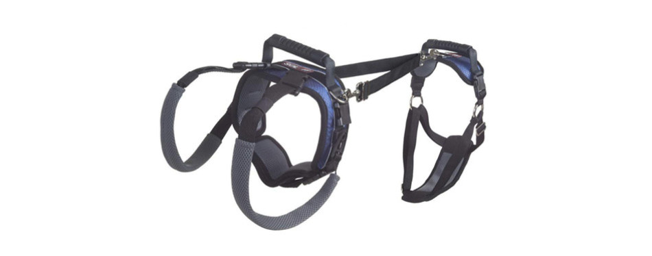PetSafe Solvit CareLift Full-Body Lifting Harness