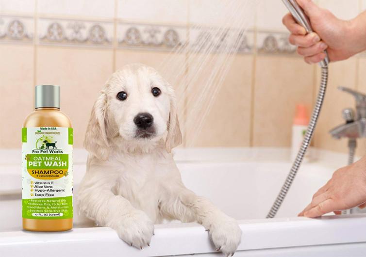 Pro Pet Works All Natural Oatmeal Dog Shampoo