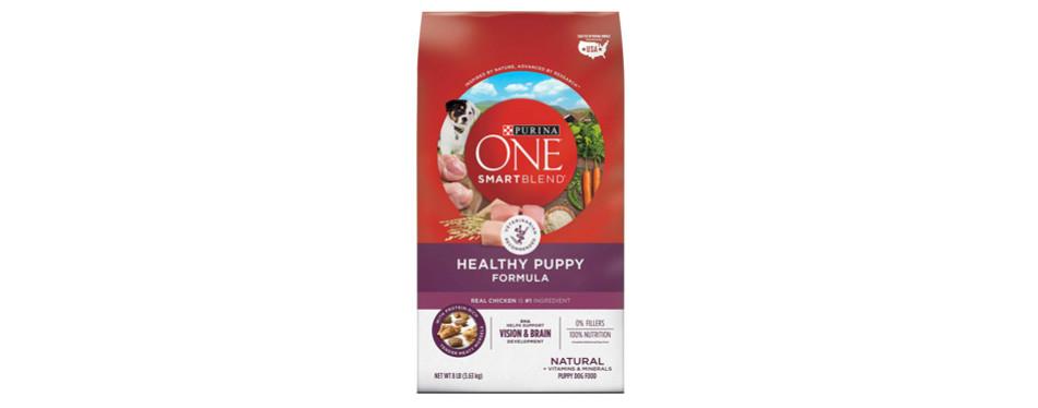 Purina ONE SmartBlend Natural Beagle Food
