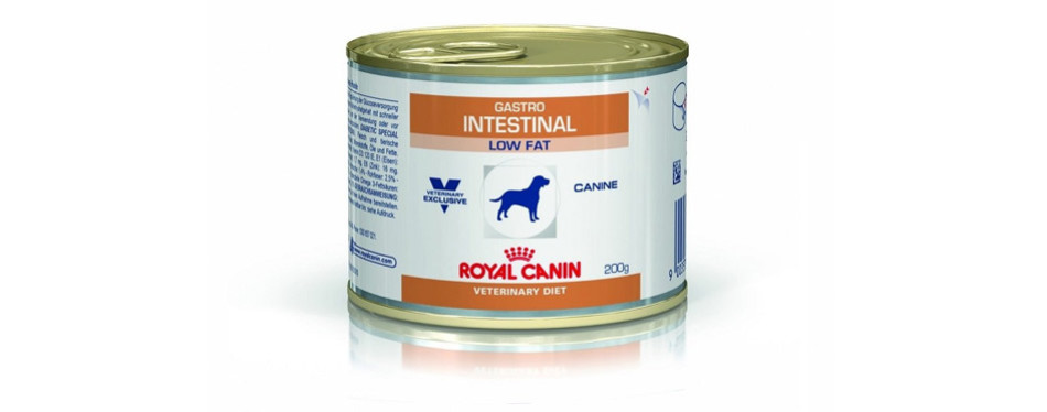 Royal Canin Gastro Intestinal low protein diet for dogs