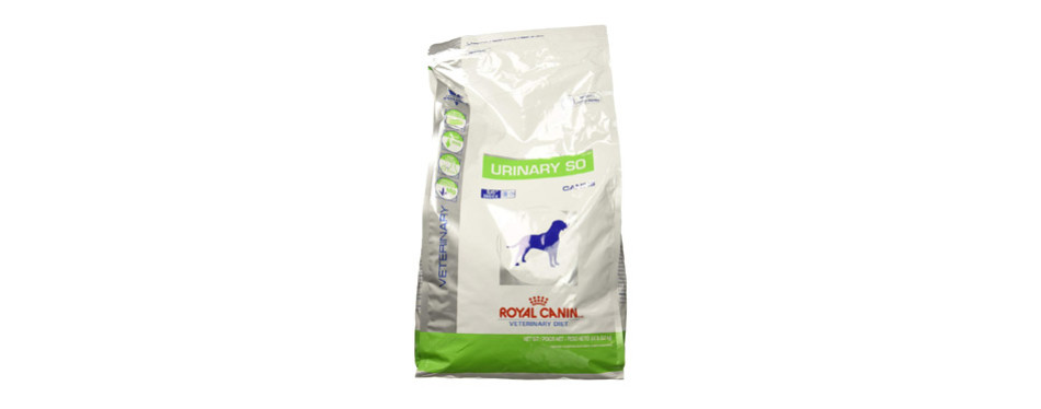 Royal Canin Urinary SO low protein dog food recipes