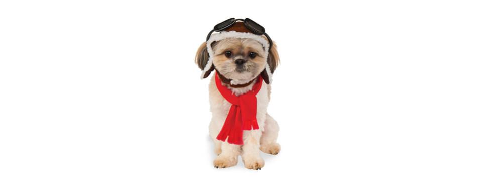 Rubies Costume Company Aviator Dog Hat and Scarf Set