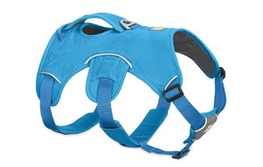 Ruffwear Web Master Puppy Harness