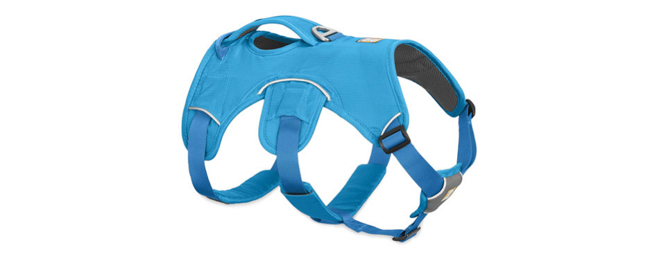 Ruffwear Web Master Secure Harness for Dogs