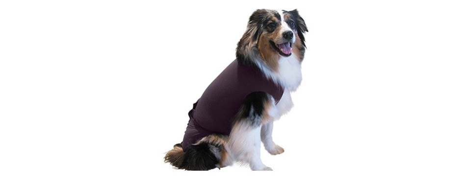 Surgi Snuggly Dog Anxiety Vest