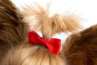 The Thoughtful Brand Dog Hair Bows