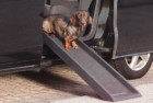 Trixie Pet Products Safety Dog Ramp
