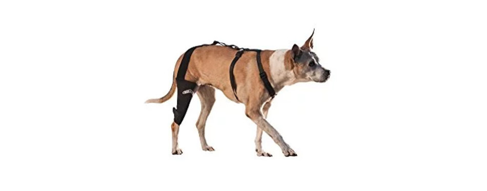 WalkAbout Canine Dog Leg Brace