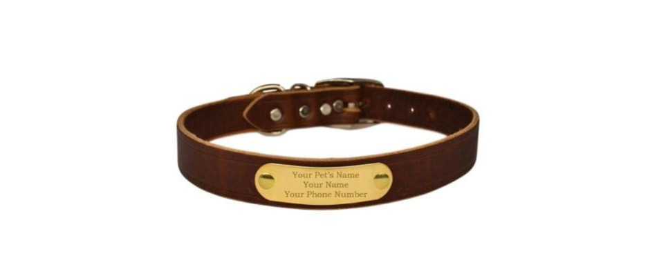 warner brand cumberland leather dog collar