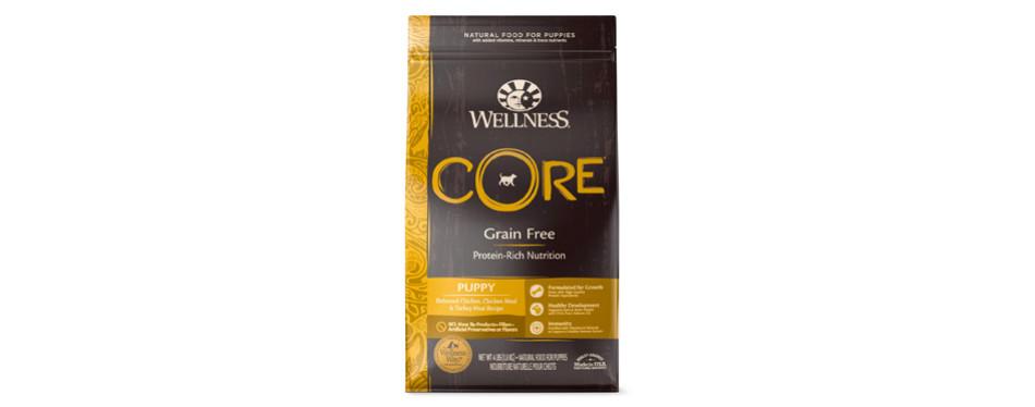 Wellness Core Natural Grain Free Dog Food for Beagles
