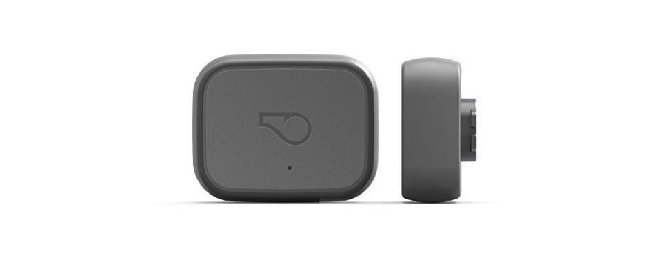 Whistle 3 GPS Pet Tracker Activity Monitor